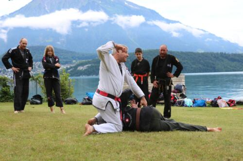 Seminar am Thunersee Juni 2019